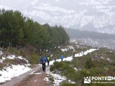 Somosierra - Camino a Montejo;foro senderismo madrid;asociacion de senderismo